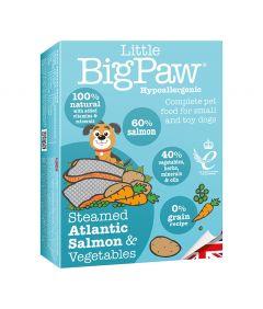 Little Big Paw Dog Salmon & Vegetable Dinner