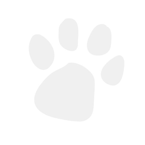 ID Tag - Circle Small White Adopted
